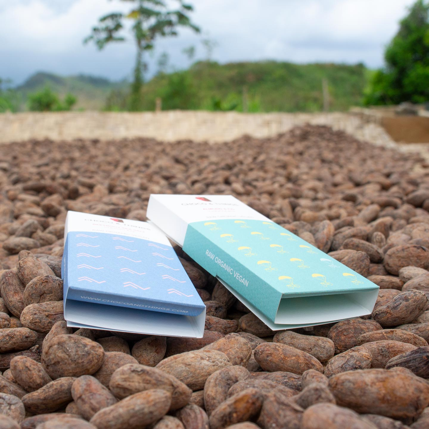 Vegan chocolate on raw cacao beans.